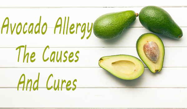 Avocado Allergy Cures